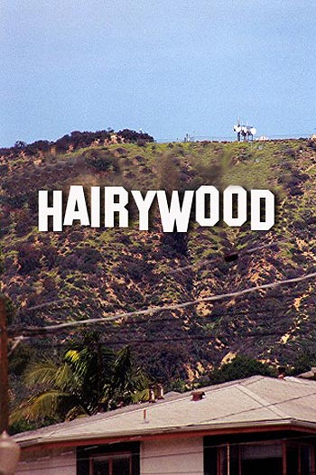 HAIRYWOOD - Sign